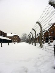 Auschwitz in inverno - Auschwitz in the winter