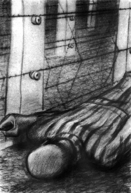 Contro il filo, Auschwitz  Jerzy Adam Brandhuber -  Drawings from Nazi Concentration Camps