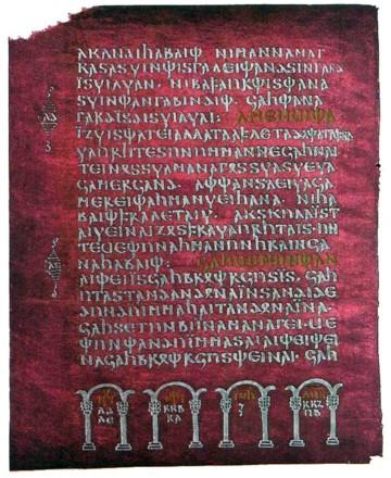 codex one samen