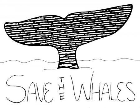 save-the-whales-brittany-dorris