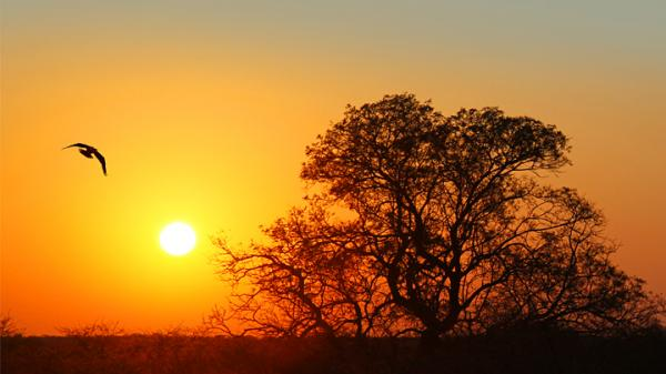 Tramonto d'Africa